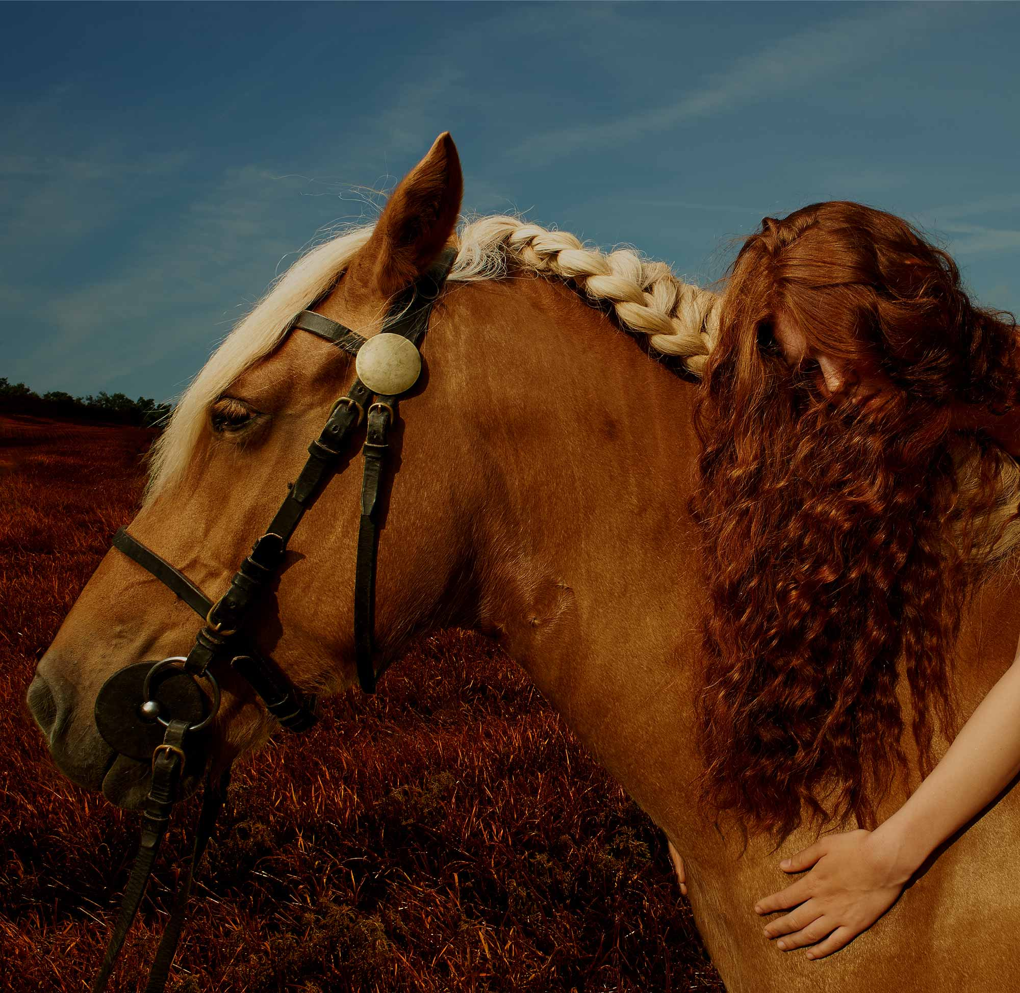 This is another of my muses, Chloée.  I paired her with the most gentle Comtois horse named Pistache who I met on a chance encounter.